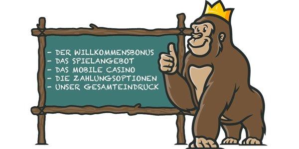 Casino Gorilla Erfahrungen
